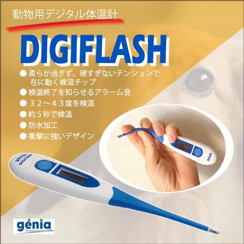 犬・猫・うさぎの検温に。 動物用デジタル体温計DIGIFLASH(デジフラッシュ)